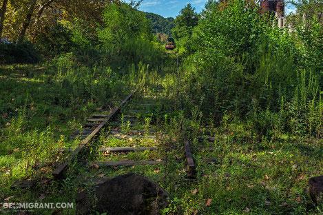 Российские войска приступили к расчистке Абхазской железной дороги