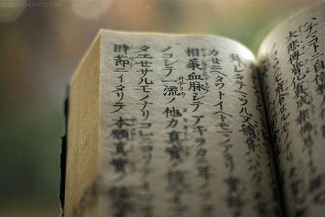 Бессмертная поэма Руставели «Витязь в тигровой шкуре» издана на Корейском языке