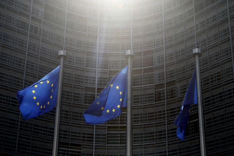 Евросоюз прекратил предоставлять убежище гражданам Грузии