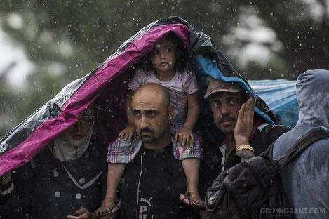 Поток беженцев заворачивает в Грузию