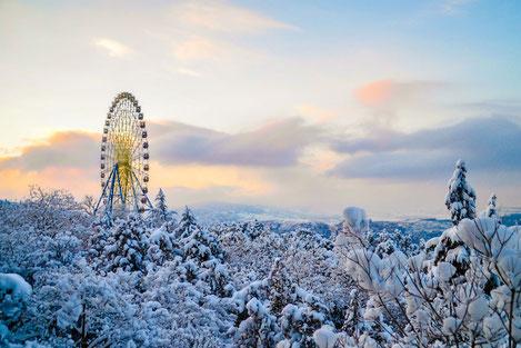 Грузия во власти снега...