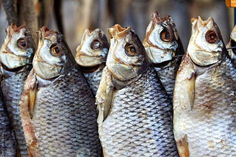 «Национальное Агентство Продовольствия» Грузии предупреждает граждан