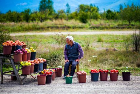 В Грузии презентована стратегия развития села