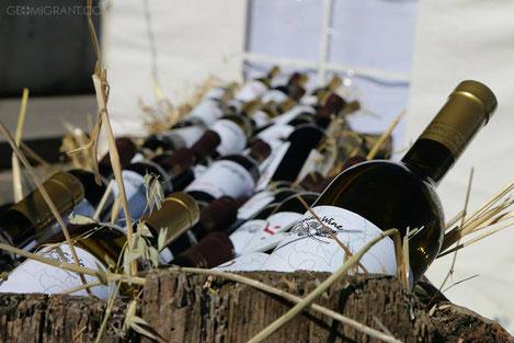 Как разобраться в грузинском вине?