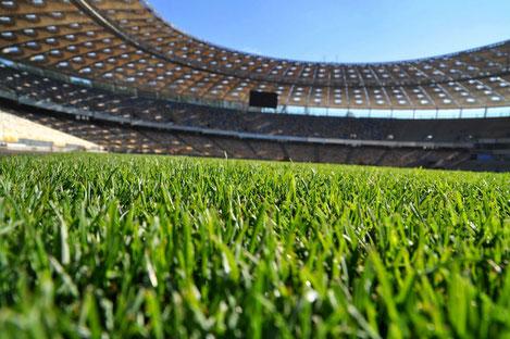 В Грузии начинается строительство спортивной инфраструктуры беспрецедентных масштабов