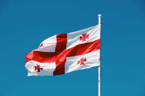 Скольким лицам и из каких стран присвоено гражданство Грузии?