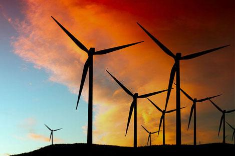 Каждый гражданин Грузии сможет приобрести долю в первой ветряной электростанции в стране