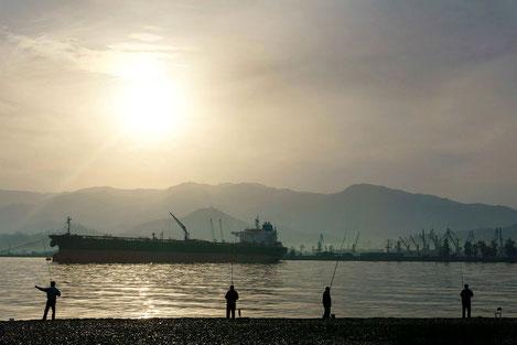 Грузия, Украина, Азербайджан и Молдова создают зону свободной торговли