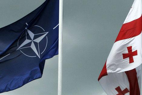 Завтра Грузия решит: быть или не быть в НАТО