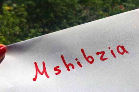 «Мшыбзиа»: В Грузии создан сайт для укрепления дружбы с абхазами