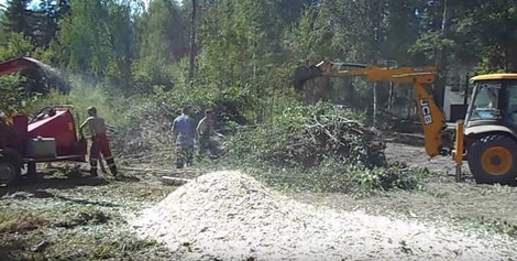 расчистка участка в спб и области