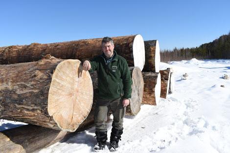 Der wichtigste Rohstoff der Region - Holz. Diese sibirischen Zedern sind viele hundert Jahre alt. Die Kälte macht aus ihnen den perfekten Baustoff. Leider wird sehr viel Raubbau an den Wäldern Sibiriens betrieben. Solche Bäume werden sogar hier selten.