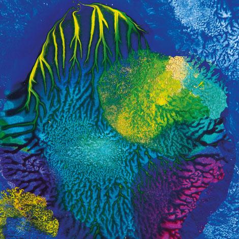 Kunstwerk DAYS' GOLD II auf ARTS IV als Acrylglas- oder Schattenfugenrahmen-Druck bestellen