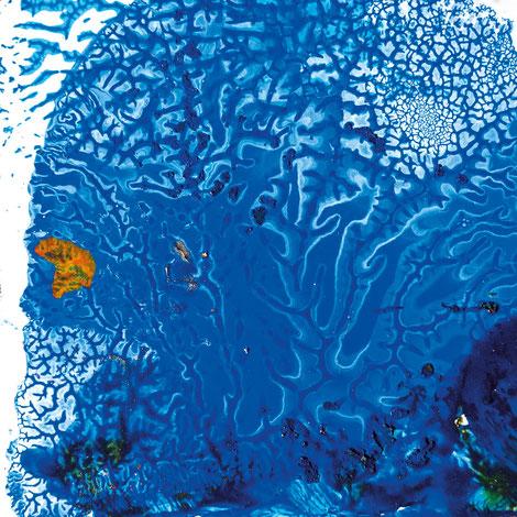 Kunstwerk DAYS' GOLD XIII auf ARTS IV als Acrylglas- oder Schattenfugenrahmen-Druck bestellen