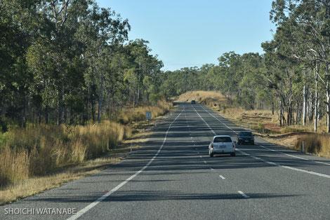 道や交通量はずっとこんな感じ。周辺の風景だけ少しずつ変わっていきます。