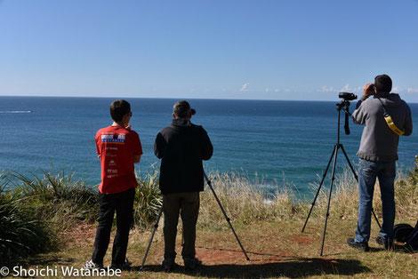 この人たちはクジラウォッチャー。無線で位置を伝えています。