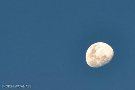 これまたビックリ! 日本と月が逆!!