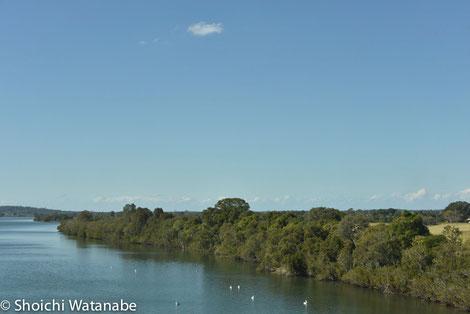 ところどころにある川は野鳥の楽園と化しています。停まりたいところ。