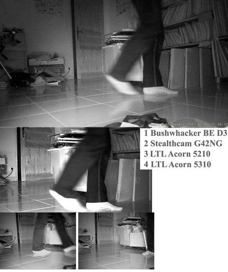 Les 4 appareils groupés sur le même sujet en marche tranquille. Photos extraites de vidéos, et légèrement contrastées et retravaillées.