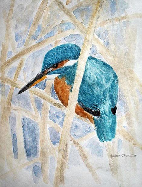 martin pêcheur Alcedo athis aquarelle Jean Chevallier