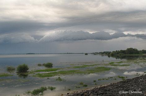 Lac du Der, photo Jean Chevallier