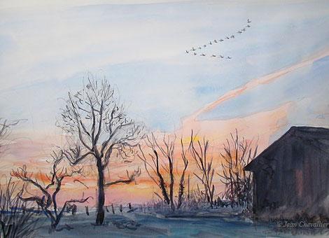 Vol de Bewicks à l'aube, aquarelle Jean Chevallier
