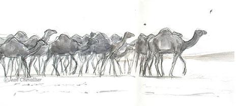 Chameaux en route vers le puits et hirondelles, lavis Jean Chevallier