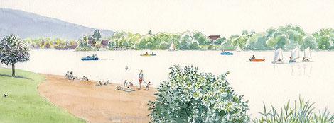 Détail d'un panneau sur le site du Malsaucy, Belfort, sur les différentes activités du lac au fil des saisons.