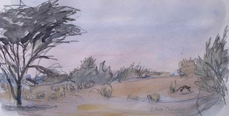 Chat ganté Felis libyca, filant à grands bonds. Aquarelle Jean Chevallier