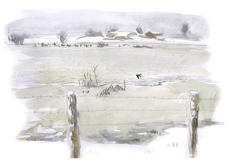 Hirondelle rustique entre neige et glace, à Chatillon sur Broué,  aquarelle Jean Chevallier