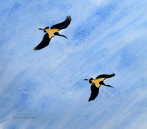 Cigognes noires, Jean Chevallier