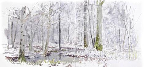 Foret inondée et enneigée, aquarelle Jean Chevallier