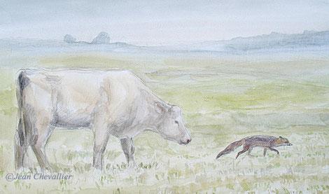 Renard et vache, aquarelle Jean Chevallier