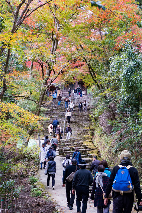 高雄神護寺 参道階段