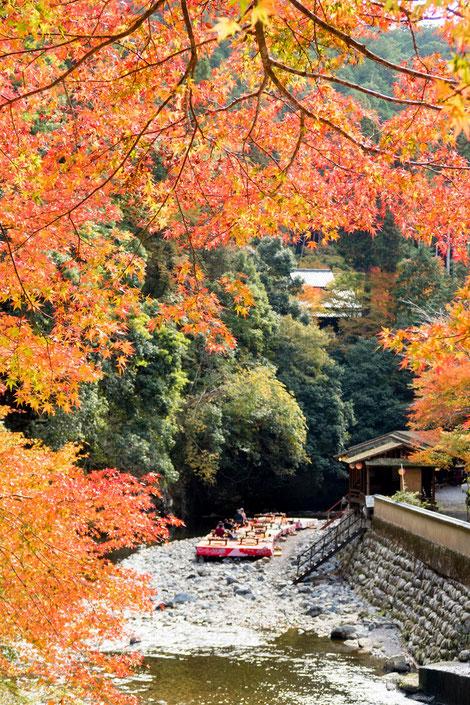 高雄紅葉 橋からの眺め