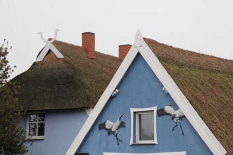Les grues sont souvent imagées sur des bâtiments
