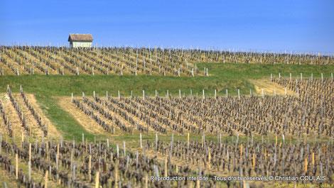 Saint-Seurin de Cadourne, trois vidéogrammes autour de la commune, afin de rester deux, trois jours à visiter. 1) Le Port de la Maréchale, 2) Vignobles et Châteaux, 3) Randonnées pédestres