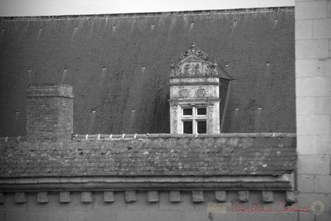 Abbaye et commune de Fontevraud