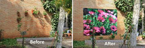 De tuinbloem foto GF01799 en de situatie voor en na het ophangen van de tuinposter.