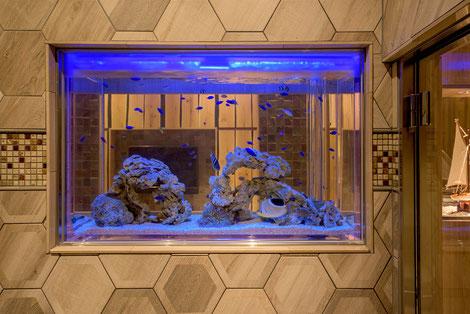 浴室側からも見える場所に設置した海水魚水槽
