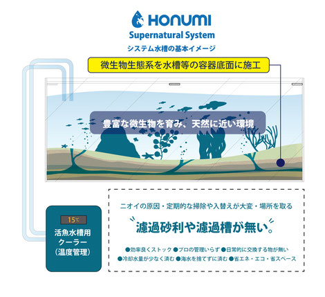 HONUMI活魚水槽の基本イメージ