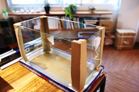 オールガラスの60cm水槽