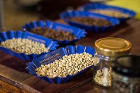 Kaffeesommelier Ausbildung in Wien