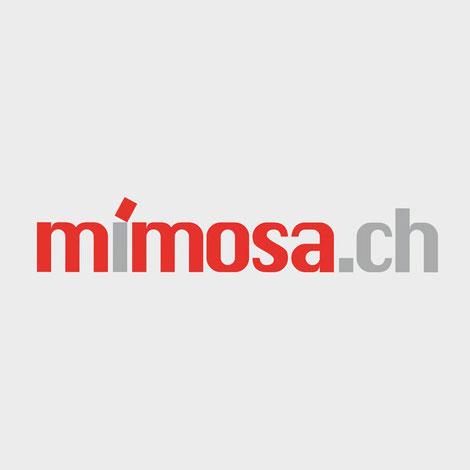 Mimosa Gartencheminées bei peterkeramik Region Thun