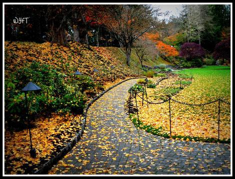 © Winifred. The Butchart Gardens, Victoria, British Columbia.