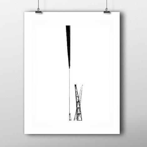 Photographic Art Print 'Dancing Cranes' by PASiNGA