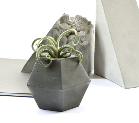 Concrete Air Plant Holder Twisted Cube by PASiNGA