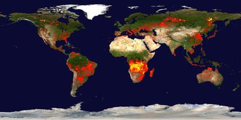 Foto: Bild von ZAMG (Satelliten-Aufnahme) zu Waldbrandregionen