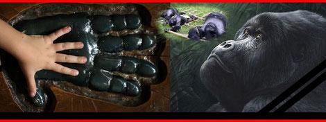 Viele Affenarten vom Aussterben bedroht