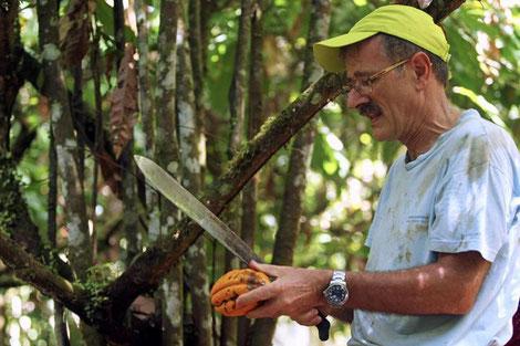 Johannes Wagenknecht mit Kakaobohne